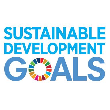 E_SDG_logo_No UN Emblem_square_rgb 2-1